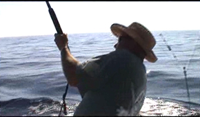 Capt. Al Offshore Fishing Part 3