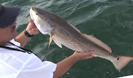 Flyfishing for Redfish with capt. Yano Serra